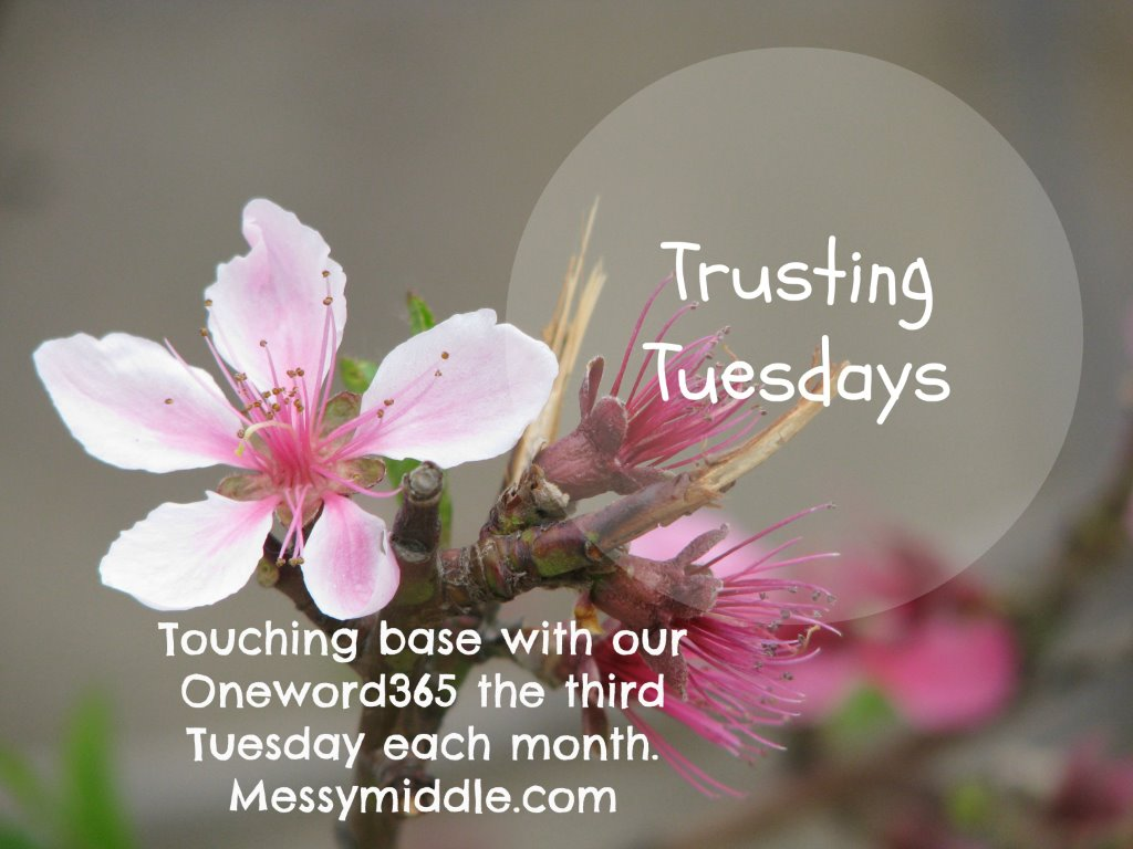 Trusting Tuesdays button-1